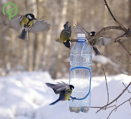Madáretető műanyag fél literes palackban