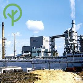osb gyárak Agepan Glunz