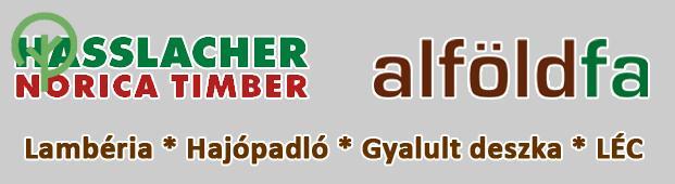 Hasslacher-gyari