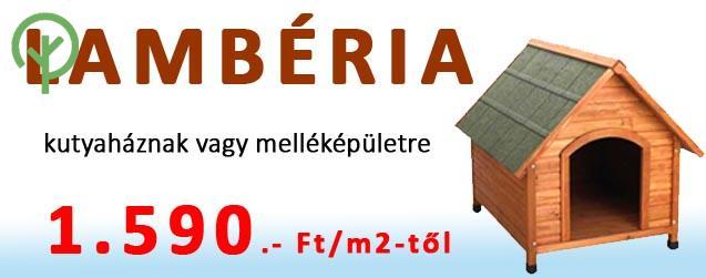 Lamberia-akcio-fololdal-1590