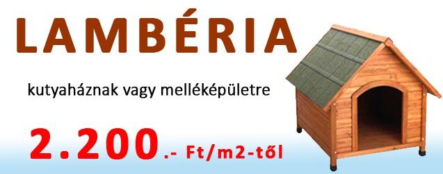 Lamberia-akcio-fololdal-2200